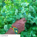 organic-herbal-smoke-tea-catnip