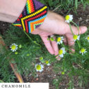 organic-herbal-smoke-tea-chamomile