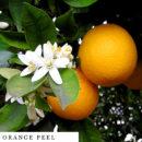 organic-herbal-smoke-tea-orange-peel