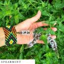 organic-herbal-smoke-tea-spearmint