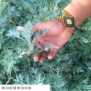 organic-herbal-smoke-tea-wormwood