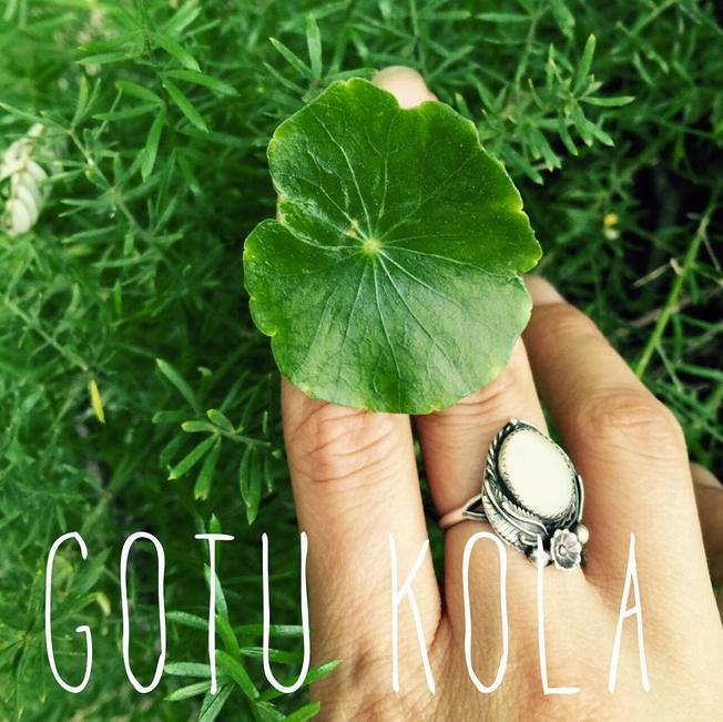Smoking Gotu Kola
