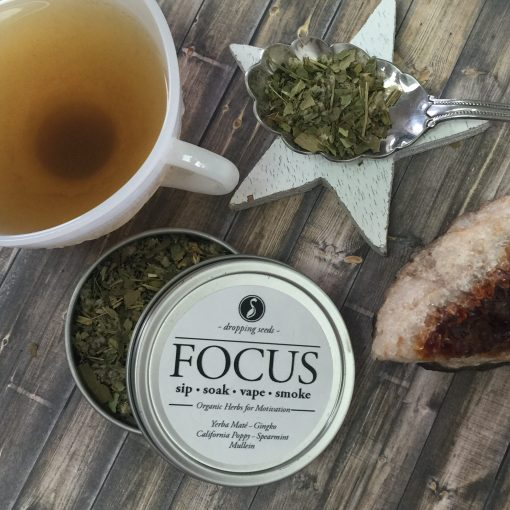 Motivating Organic Herbs for Concentration in Tea with Ginkgo, Yerba Mate, California Poppy, Spearmint + Mullein