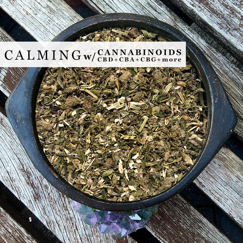 Learn These Can You Smoke Hemp Tea {Swypeout}