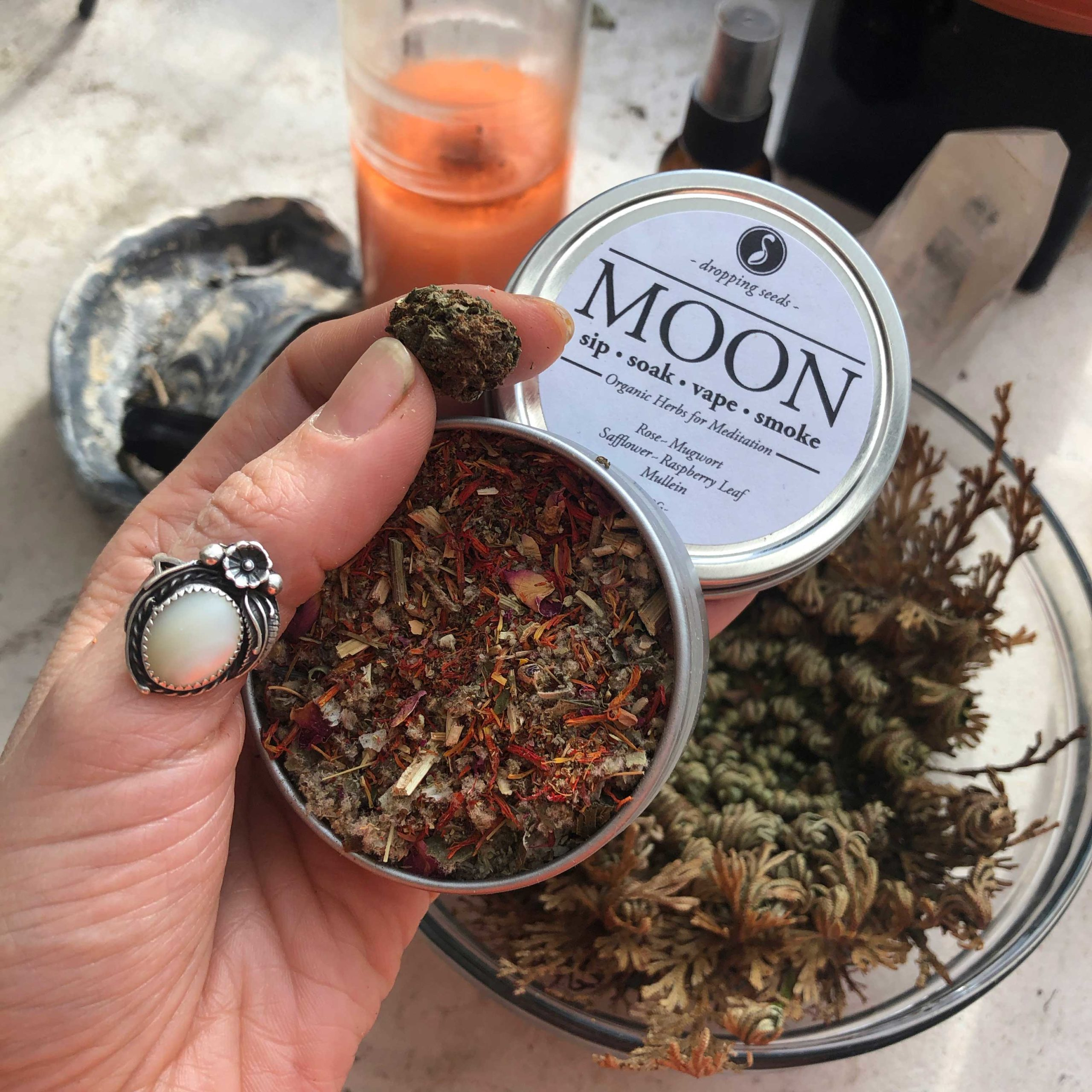 New Moon Manifestation Intention Ritual with Rose of Jeriicho